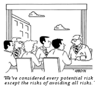 a cartoon of a board meeting, where the person at the table is saying 'we've considered every potential risk, except the risks of avoiding all risks'